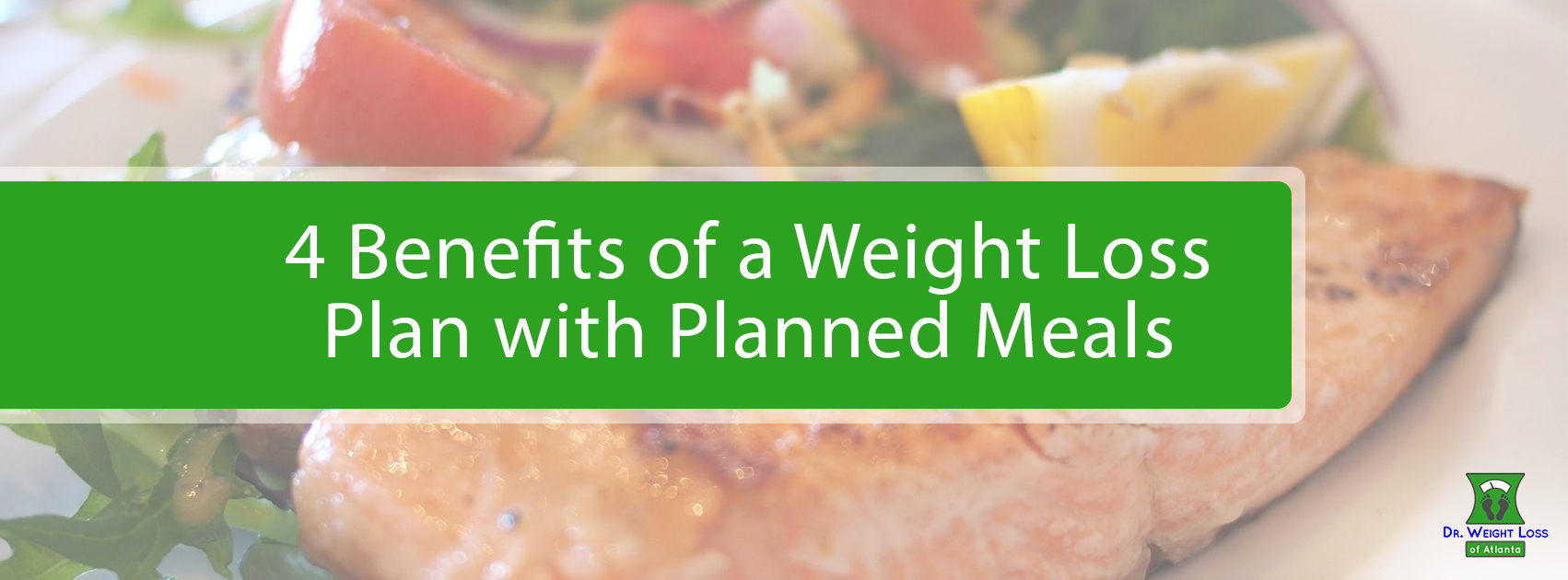 Weight Loss Plan with Planned Meals | Dr. Weight Loss Atl